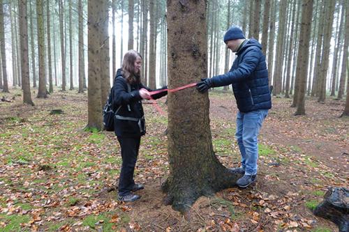 Florian und Nick haben sich für einen Baum entschieden, der herausgenommen werden sollte