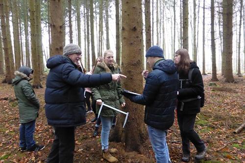 Die Daten aller Bäume werden in einer Tabelle aufgeschrieben und ausgewertet, damit ein Waldbesitzer errechnen kann, wie viel Kubikmeter die zum Fällen vorgeschlagenen Bäume ergeben und was er beim Verkauf des Holzes verdienen kann
